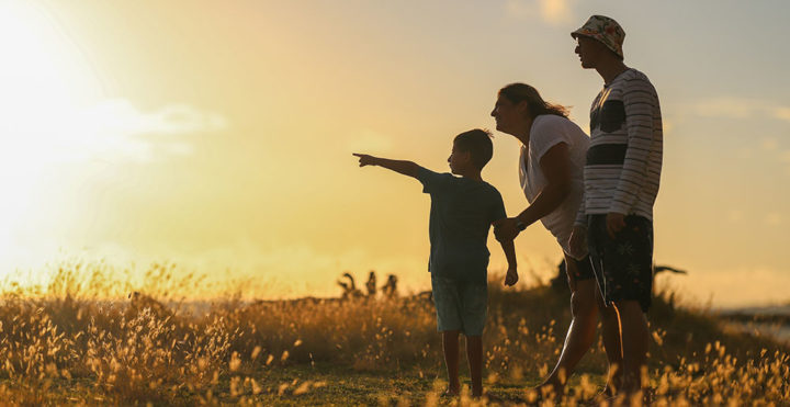 Gesvalt apoya cajas de compensación en todo el país en el cumplimiento de la Circular externa 003 de 2020 de la Superintendencia de subsidio familiar